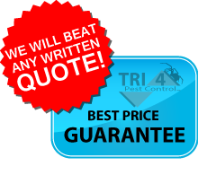 cheap-pest-control-free-quotes
